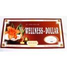 """XXL-Geldgeschenk Umschlag """"Wellness - Dollar"""""""