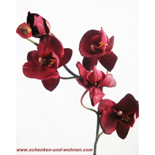 kunst orchidee phalaenopsis bordeaux ca 42 cm. Black Bedroom Furniture Sets. Home Design Ideas