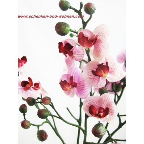 kunst orchidee phalaenopsis mini ca 57 cm schenken und. Black Bedroom Furniture Sets. Home Design Ideas