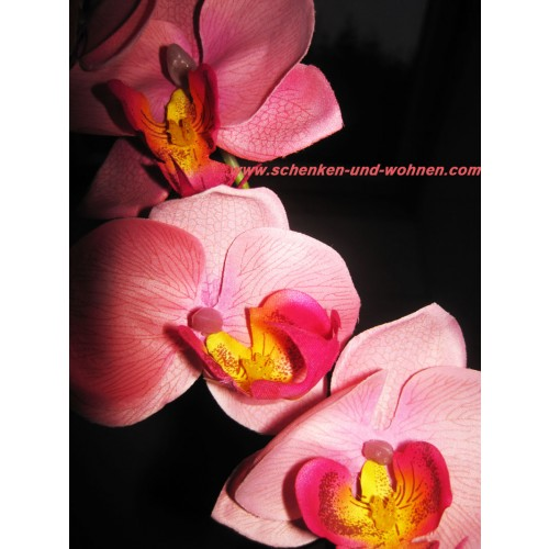 kunst orchidee phalaenopsis rosa 80 cm schenken und. Black Bedroom Furniture Sets. Home Design Ideas