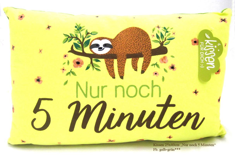 """Kuschelkissen """"Nur noch 5 Minuten"""" ca. 40x25 cm mit Füllung und RV"""