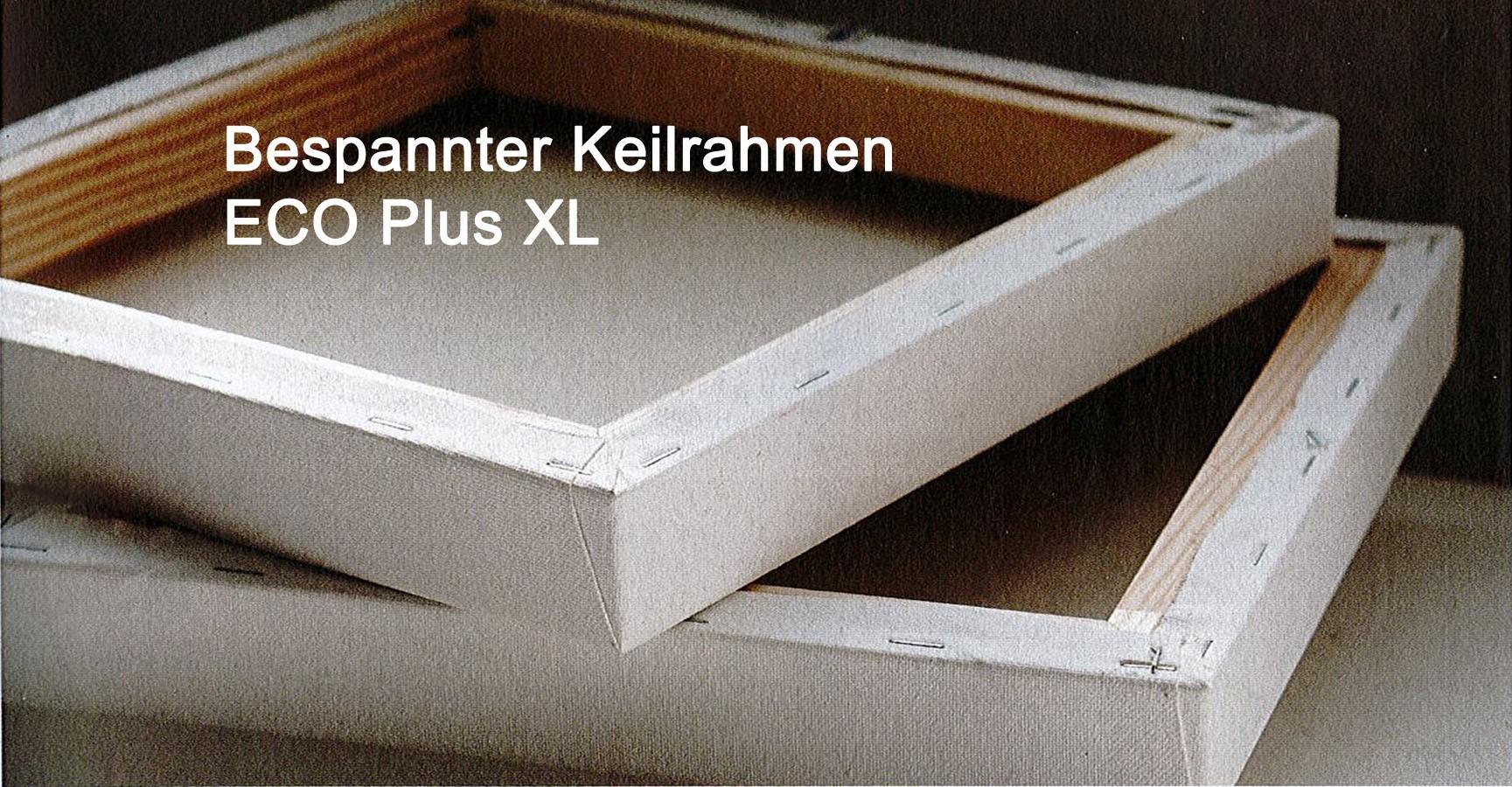Bespannter Keilrahmen Ecoplus XL 40x60 Tiefe 3,8 cm