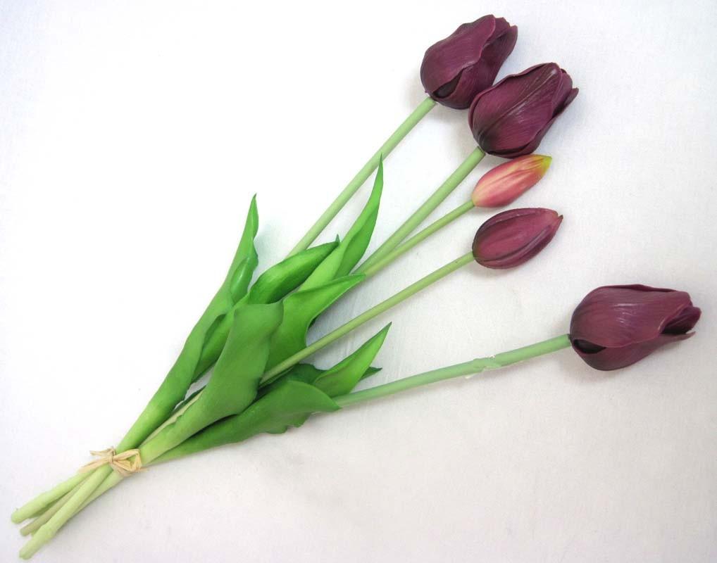 Tulpenbund französisch gemischt,  beere ca. 47cm