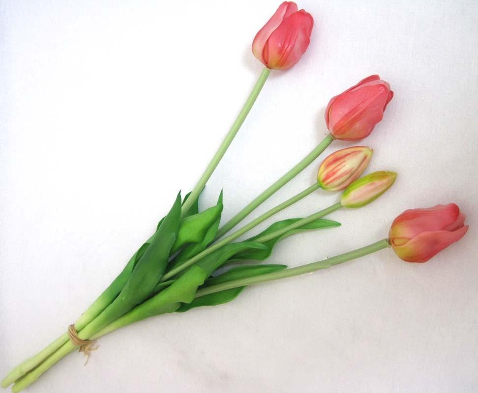 Tulpenbund französisch gemischt,  rosa ca. 47cm