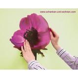 Anemone Dekosticker Wandtattoo 50x70 (BxH) 6teilig selbstklebend