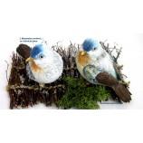 1 Poly - Vogel Blaumeise sortiert, Braun/BeigeBlau ca. 9,5 x 9,5 x 14 cm (T/B/H)