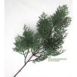 Deko-Zweig Zypresse grün Länge ca. 60 cm